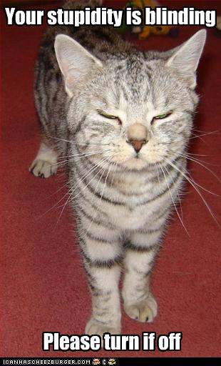funny-pictures-cat-calls-you-stupid1
