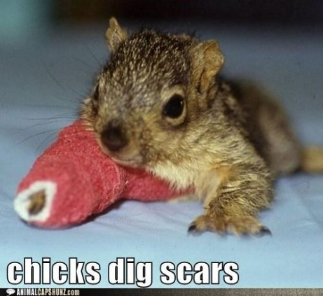 4a391_funny-captions-chicks-dig-scars