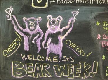 There are no real bears at bear week.