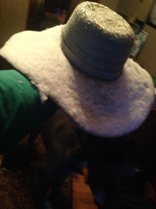 My hat after this morning's walk