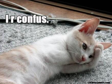 Confused-Cat-Meme-1-610x457