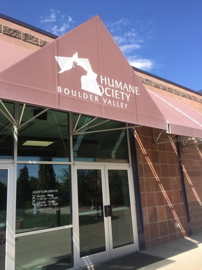 At the Humane Society