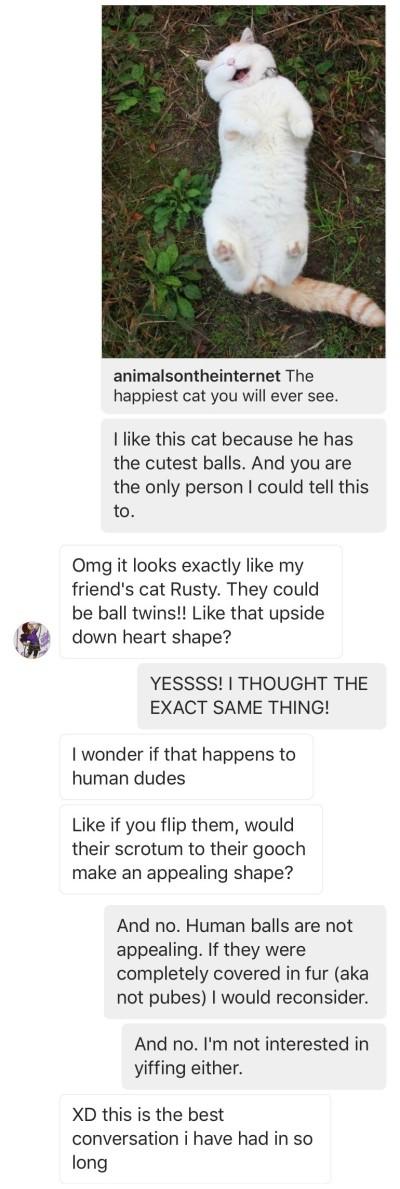 catballs